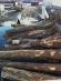 Cypress Island logs