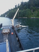 Helicopter recovery and salvage