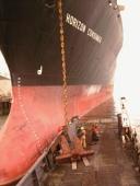 Anchor inspection platform